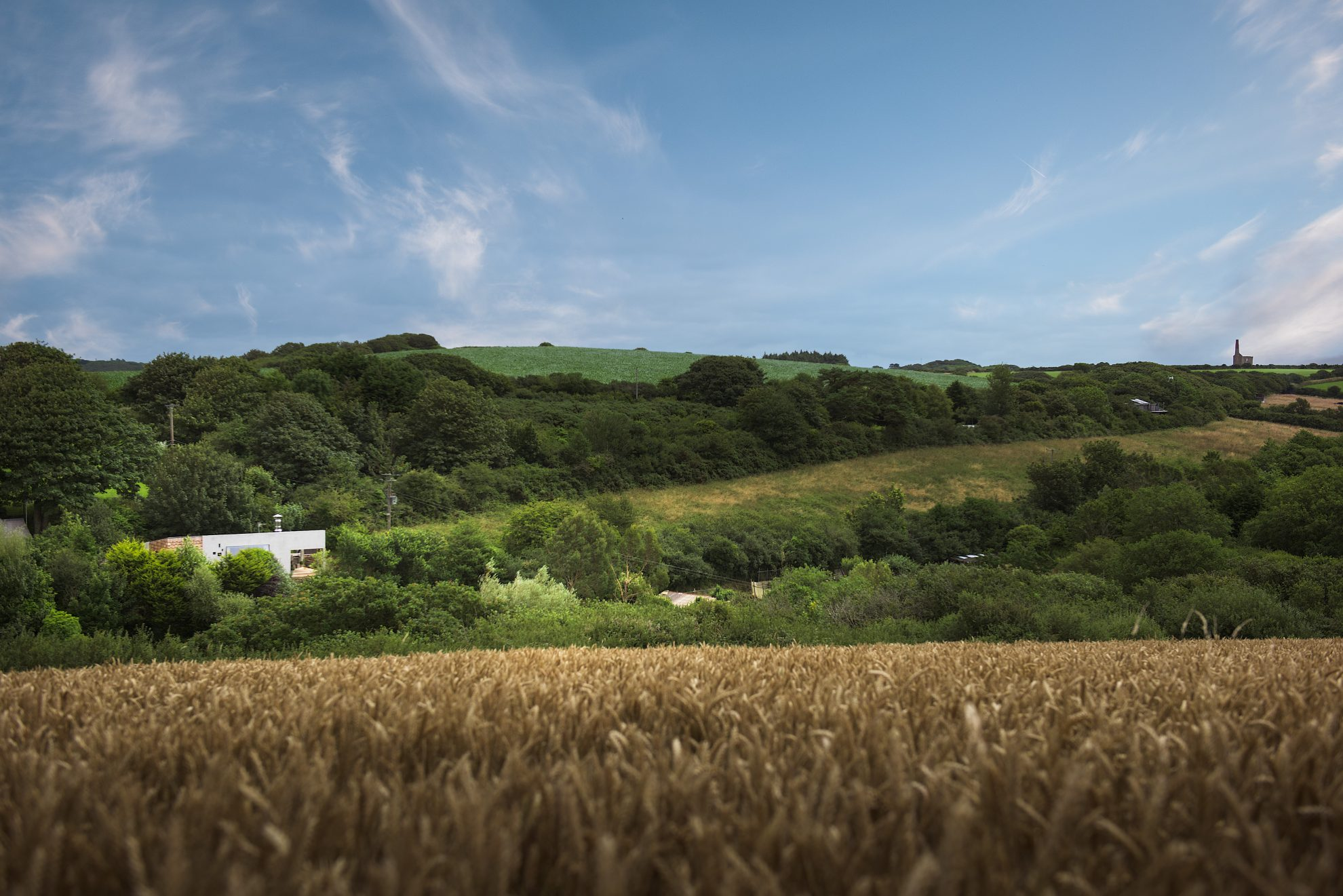 Fields and rolling hills of Cornwall - Residential Architects in Cornwall, Truro